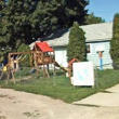 Country Bear Daycare, Kalispell