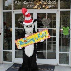Whiterabbit Preschool Academy of Learning, Creedmoor