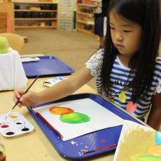 Buffalo Grove Montessori School, Buffalo Grove
