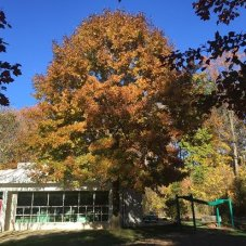 Green Acres School Extended Care, Rockville