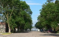 Meadow Grove, NE