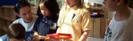 Lake Manassas Academy, Gainesville
