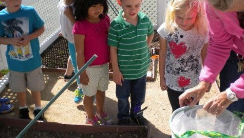 Honey Tree Nursery School, Thousand Oaks
