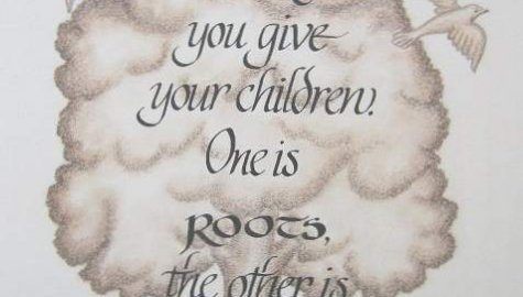 Roots To Wings Childcare, Fuquay Varina