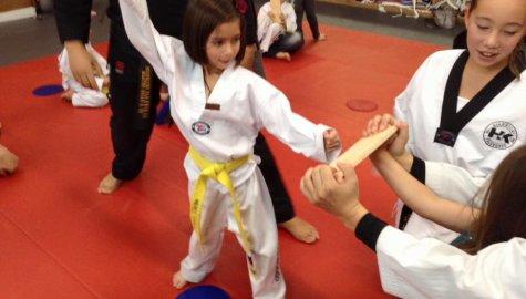 Highkicks Taekwondo and Children's Academy, Chantilly