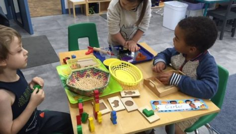 Arris Montessori Academy, Ashburn