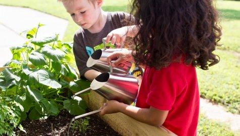 Guidepost Montessori Spruce Tree, Raleigh