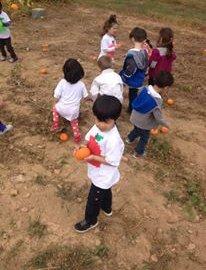Horizon Child Development, Reston