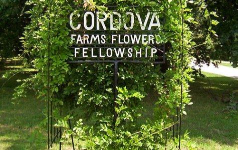 Cordova, TN