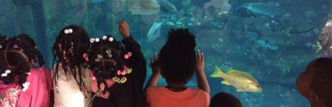 Adventure World Child Development Center, Wilmington