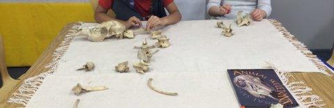 Lone Oak Montessori School, Bethesda