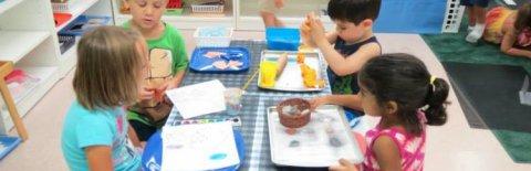 Bridges Montessori School, Bel Air