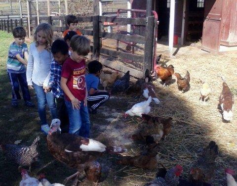 Farmland Child Development Center, Potomac