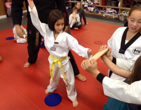 Highkicks Taekwondo and Children's Academy, Chantilly
