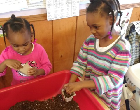 Play while Learning Home Daycare, Bellwood