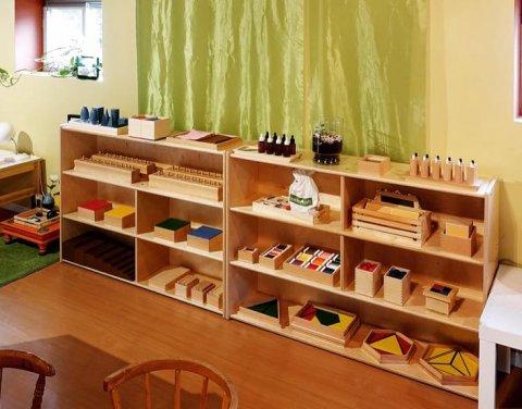 Mammolina Montessori Home-School, Springfield