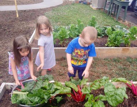 Wilkes Developmental Day School, Wilkesboro